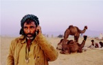 Modern camel trader